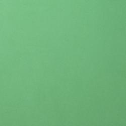 Florence • Cardstock smooth A4 Emerald  (10 stuks)