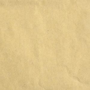 Florence • Cardstock smooth 30,5x30,5cm Kraft light 1 vel
