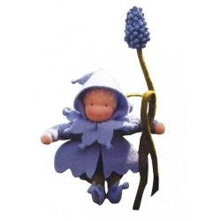 Blauw Druifje (A40900)