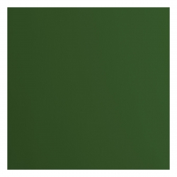 Florence • Cardstock smooth A4 Pine  (10 stuks) (2927-078)