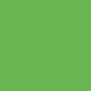 Gimme5 - BF 754A - grass green