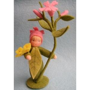 Vilt-Bloemenkind dagkoekoeksbloem