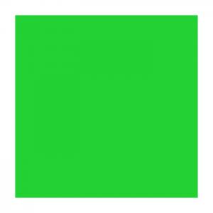 Ritrama Fluor Vinyl Green