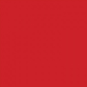 Brick 1000 Matt - BK0007 - Red