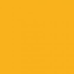 P.S. Electric - E0004 - yellow