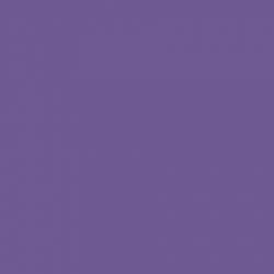 P.S. Electric - E0015 - purple