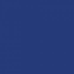 P.S. Electric - E0029 - blue
