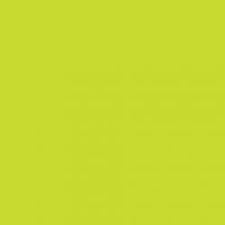 P.S. Electric - E0030 - lime