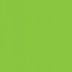 Hi-5 - H50026 - fluorescent green
