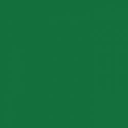 P.S. Film - A0009 - green