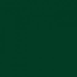 P.S. Film - A0010 - dark green