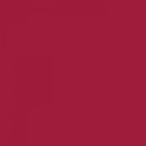 P.S. Film - A0016 - burgundy