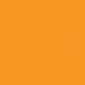P.S. Film - A0023 - fluorescent orange