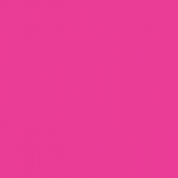 P.S. Film - A0025 - fluorescent raspberry