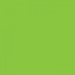 P.S. Film - A0026 - fluorescent green