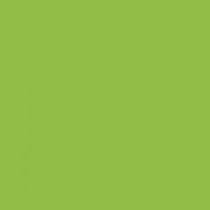 P.S. Film - A0058 - apple green