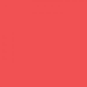 P.S. Film - A0060 - hibiscus