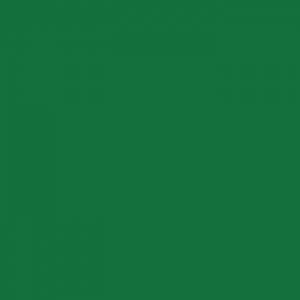P.S. Stretch - ST0009 - green