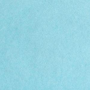 StripFlock Pro - S0051 - pale blue