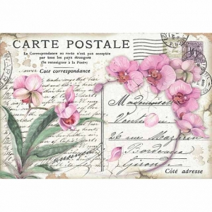 Stamperia Rice Paper 48x33 Pink Orchid